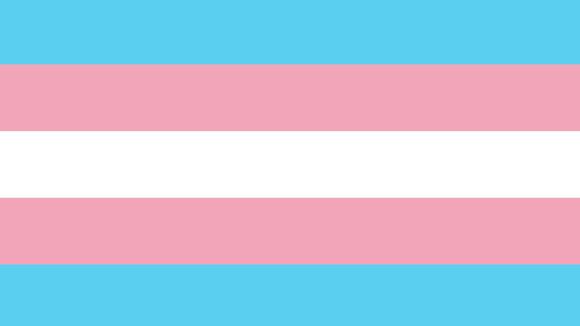 A tarefa feminista na luta pelos direitos das pessoas trans